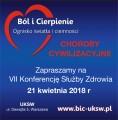 Bol_i_cierpienie_2018
